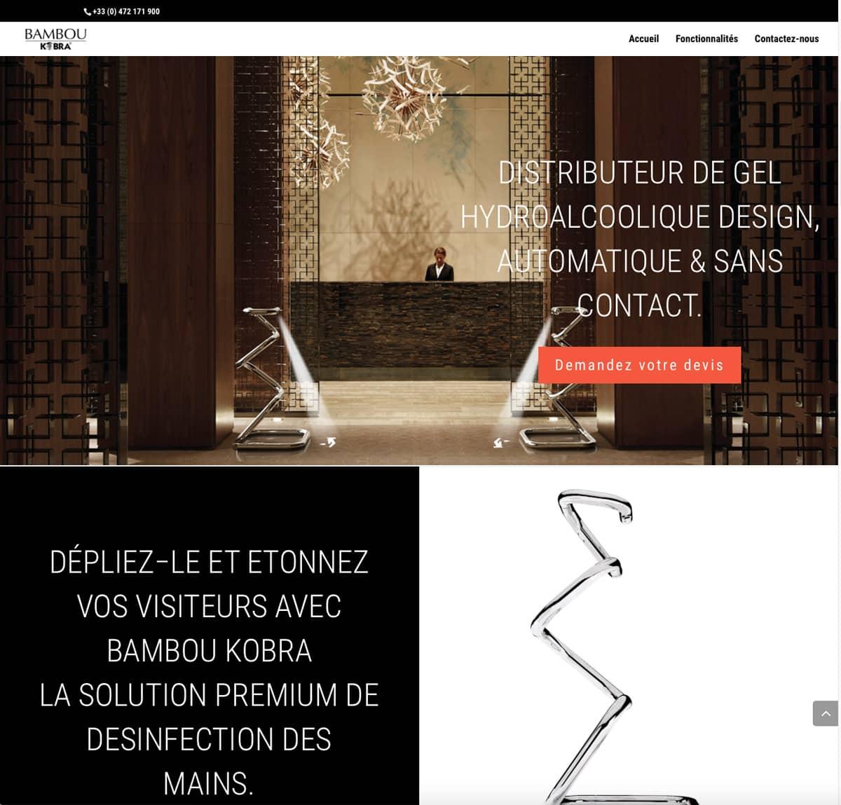 Création de Site Bambou
